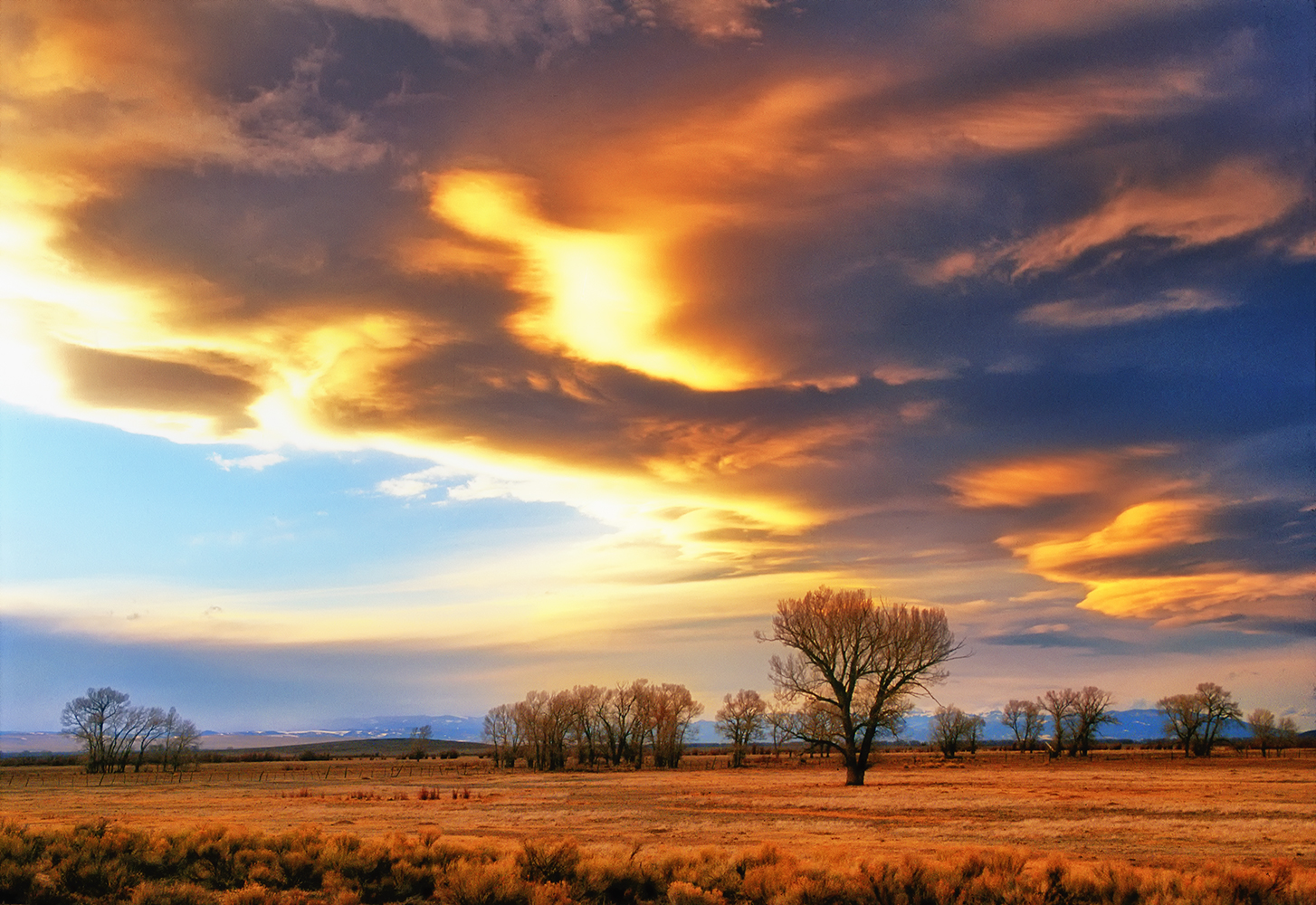 Late afternoon sun illuminates wind-sculpted storm clouds over the San Luis Valley east of manassa.
